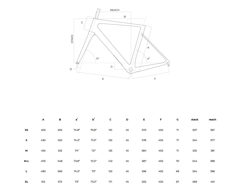 Geometrietabelle_Cipollini%20Bikes_MCM.png